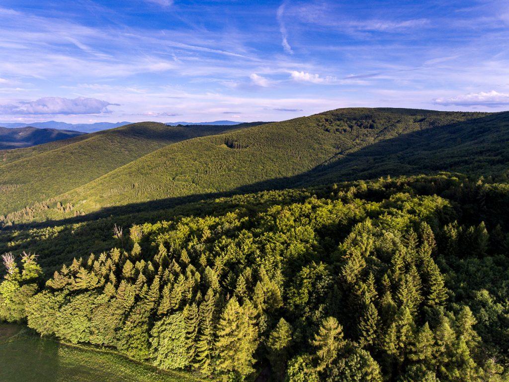Bílé Karpaty, Vlárský průsmyk
