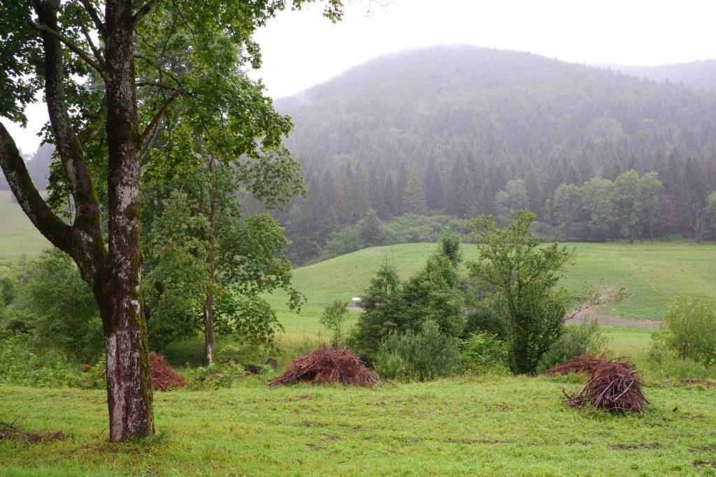 Vrátná dolina