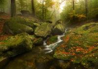 Krajinou-ticha-