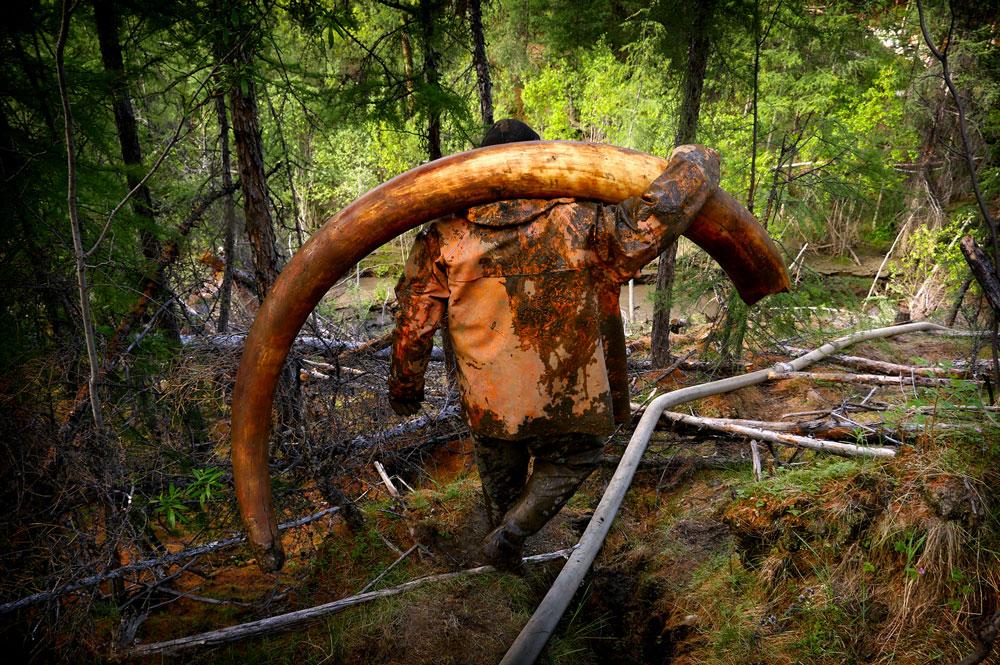 Amos Chapple: The Mammoth Pirates