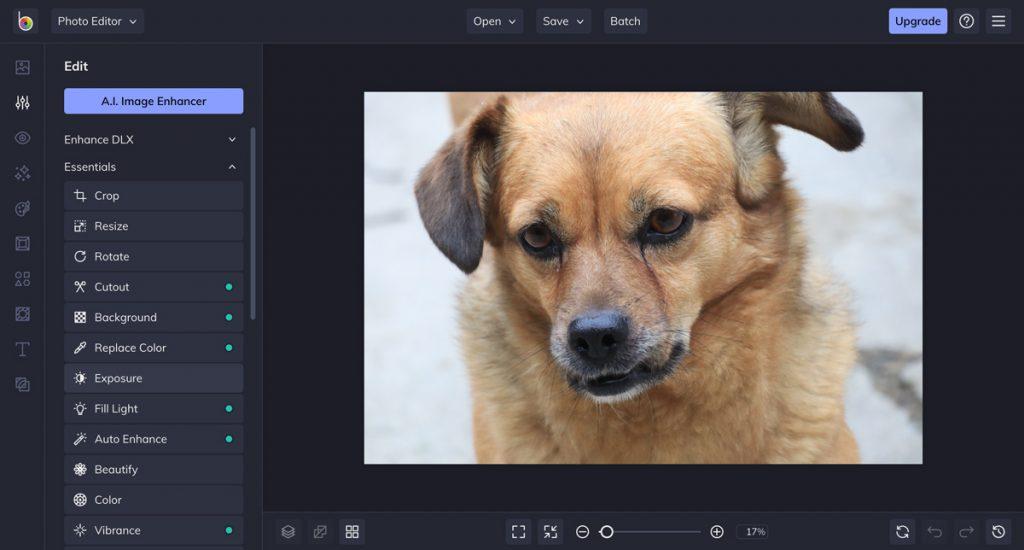 BeFunky - program na úpravu fotek zdarma