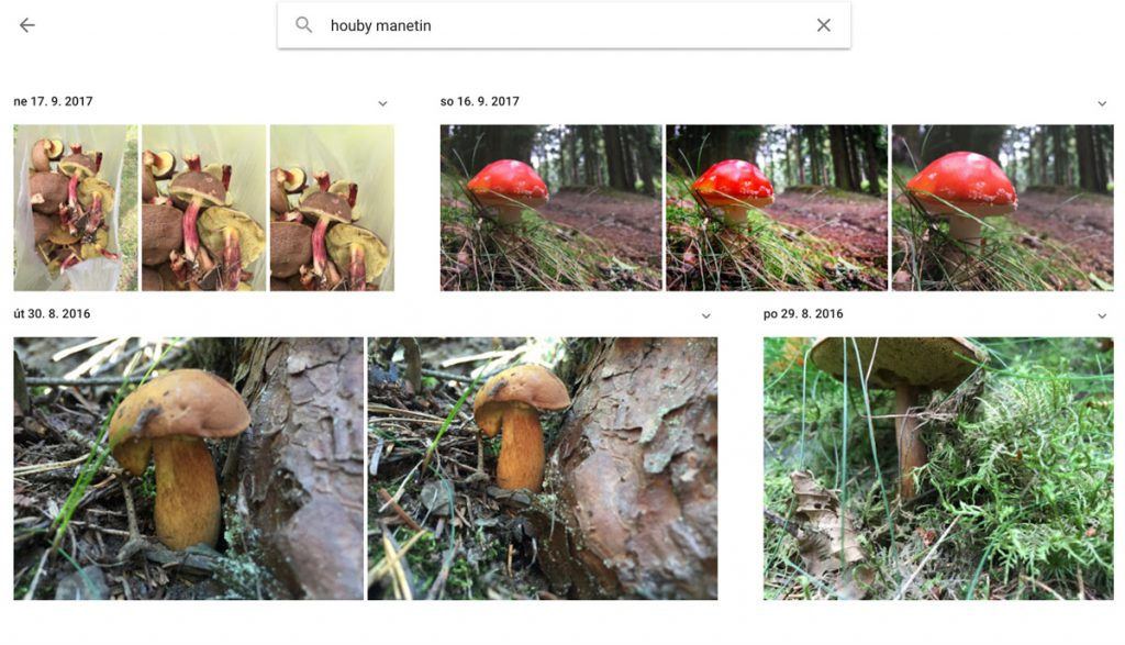 Google Photos houby