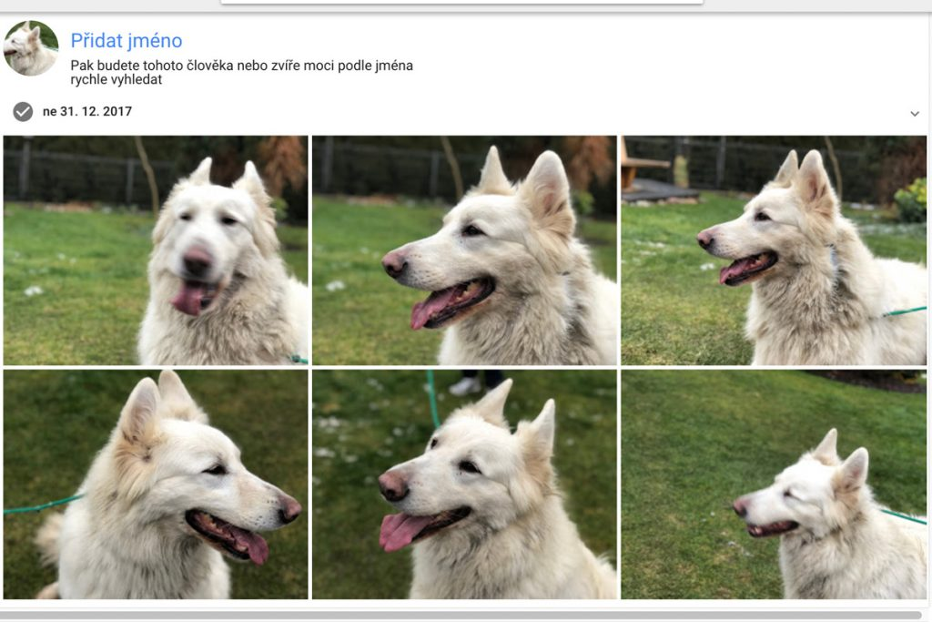 Google Photos Pes
