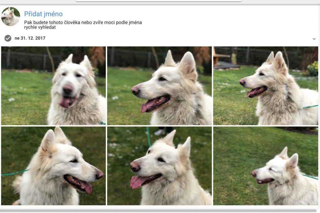 Google Photos Pes
