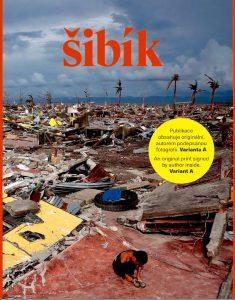 Jan Šibík kniha Deset let