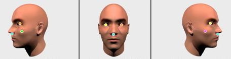 Na oficiální ilustraci Google na svých stránkách ukazuje, jak si zaměřuje obličeje. Zdroj: Google Developers