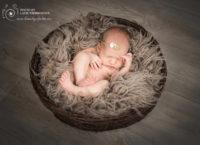 novorozenecke_foceni_jihlava