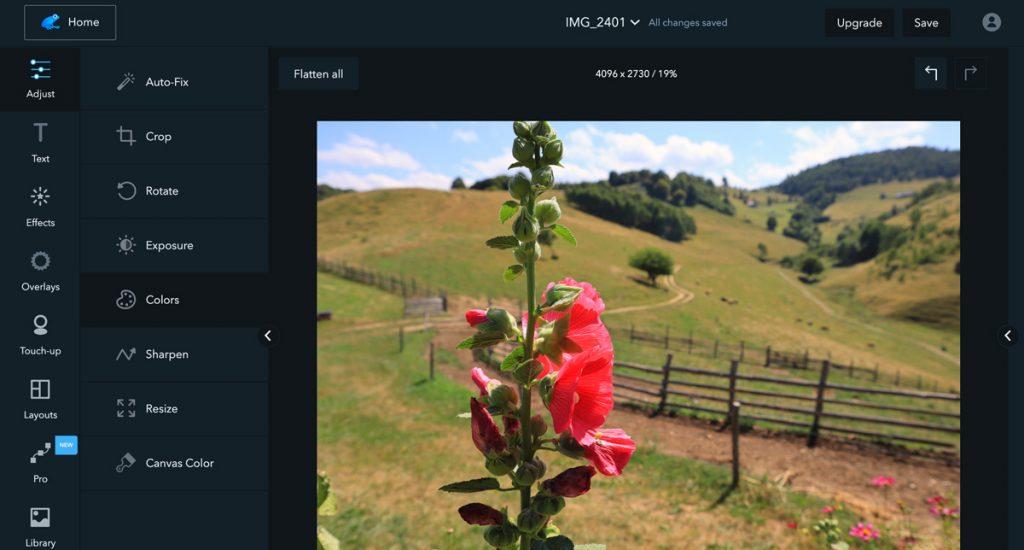 Ribbet - program na úpravu fotek online