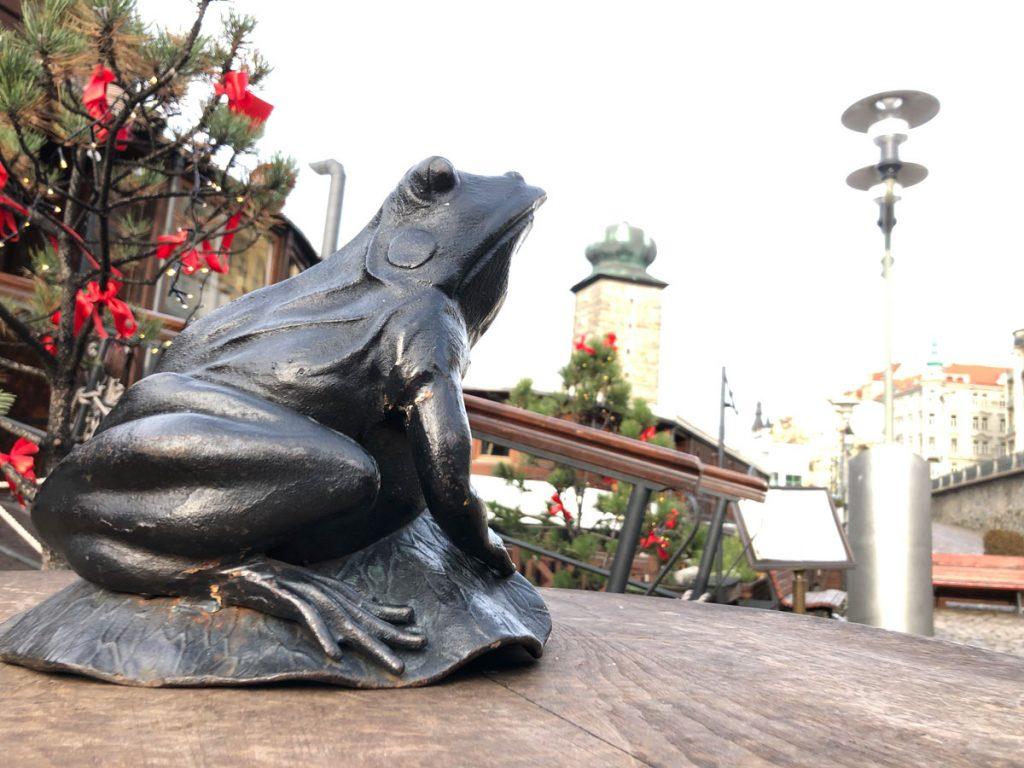 Žába bez HDR